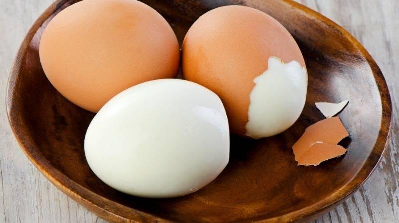 Разрешается ли дать собаке вареное или сырое яйцо, а также скорлупу