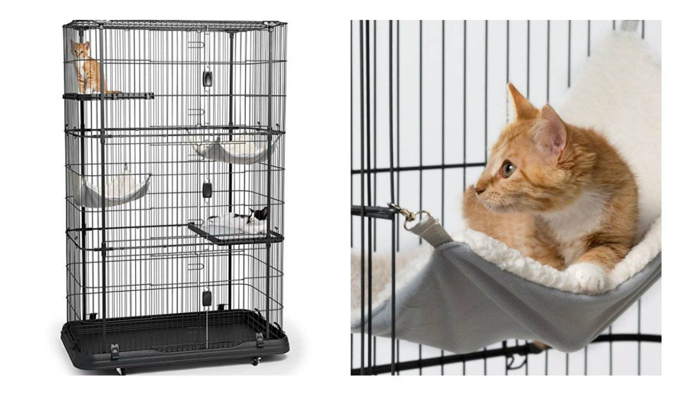 Идеи для домашних животных на даче и в квартире