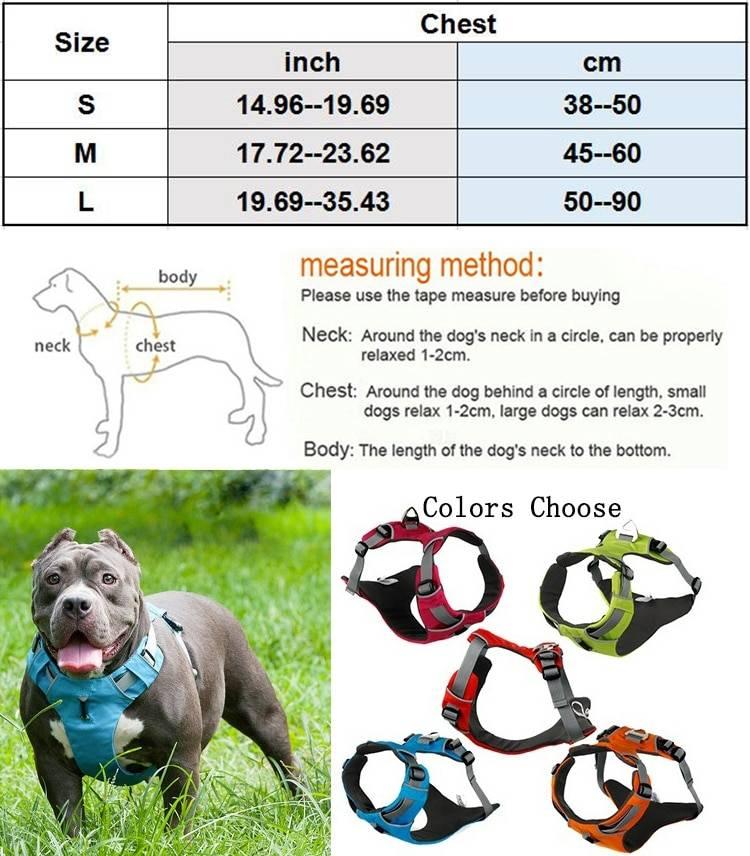 Как подобрать шлейку для собаки