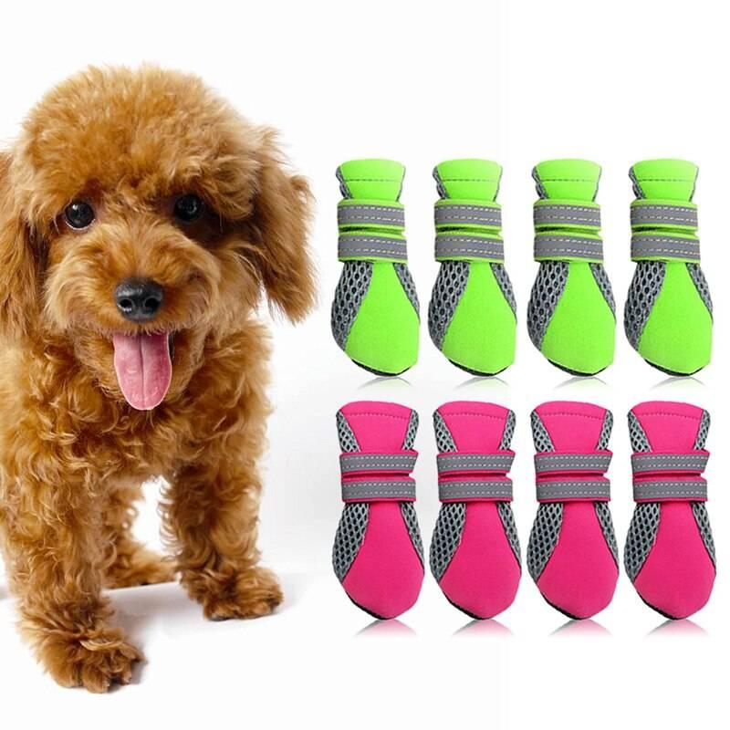 Обзор одежды для большой собаки, советы кинологов и ветеринаров