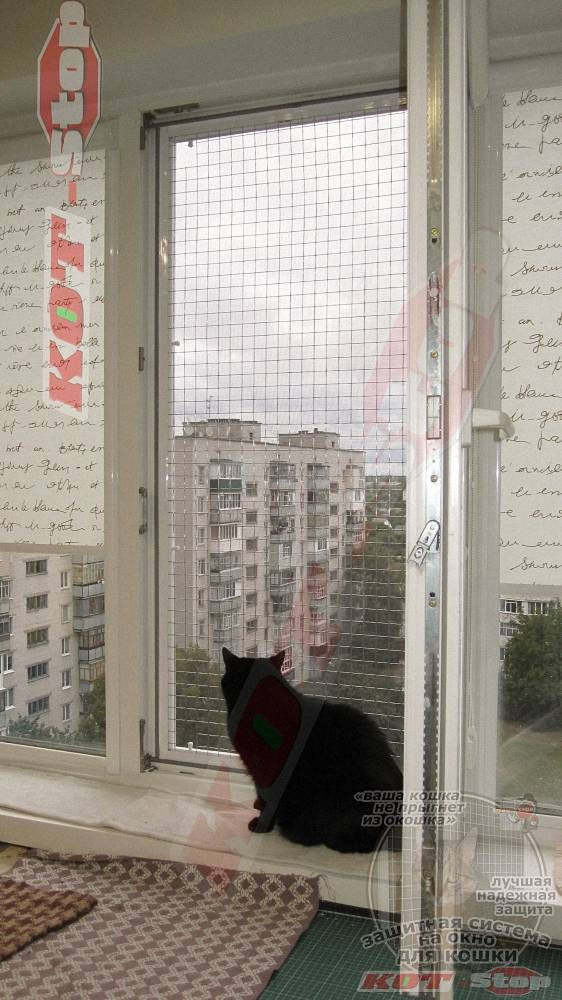 ?антикошка» — сетка на окно для защиты домашних питомцев