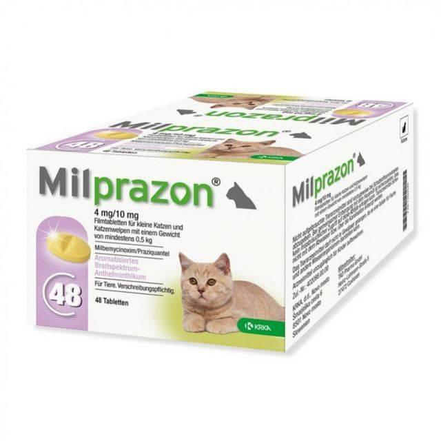 Милпразон для собак и кошек: инструкция по применению