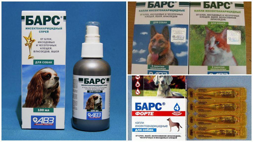 Капли и спрей для кошек от блох и клещей «барс»: инструкция по применению средства для защиты котят и взрослых животных