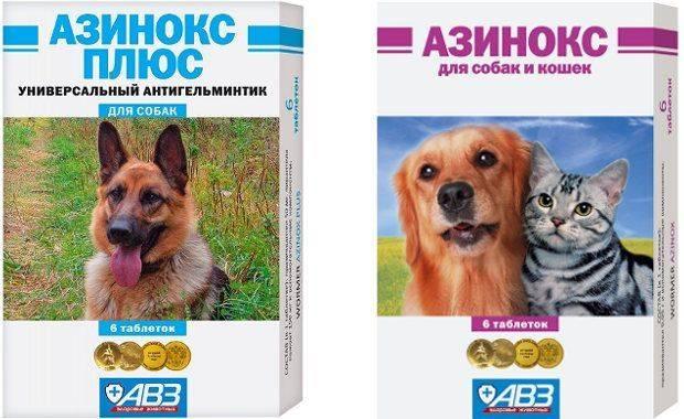 Азинокс плюс для собак: состав и способ применения