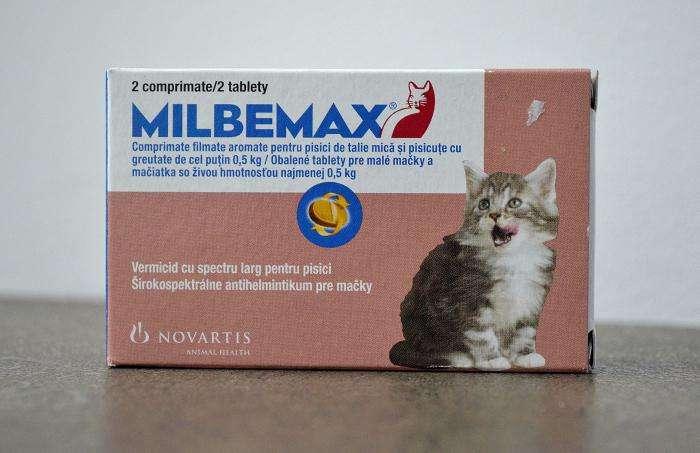 Мильбемакс для кошек — действенное средство против гельминтов