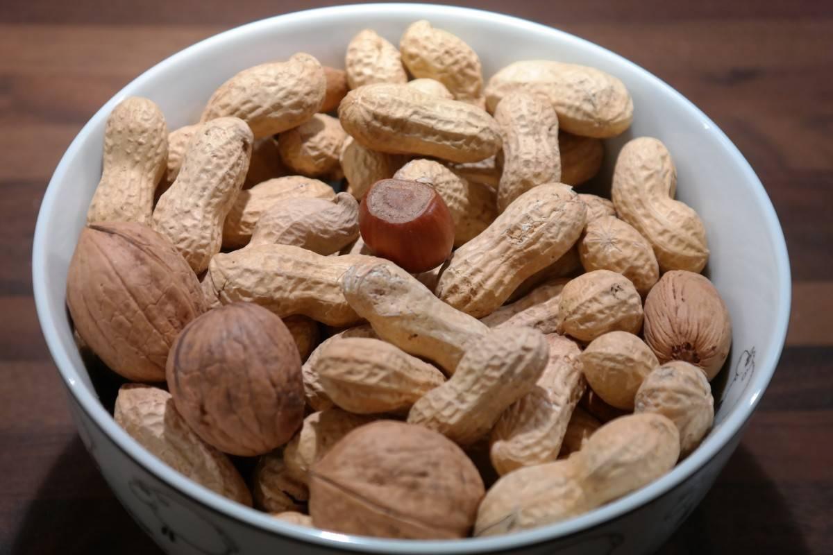 Можно ли собакам орехи и какие лучше давать: грецкие, кедровые, арахис или кокос