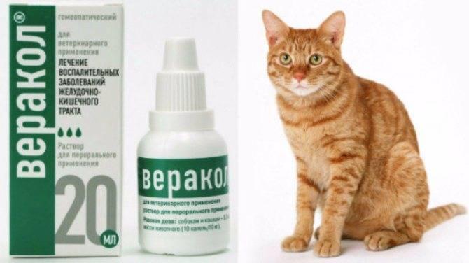 Препарат веракол: инструкция по применению состав, условия хранения, таблетки веракол для кошек отзывы