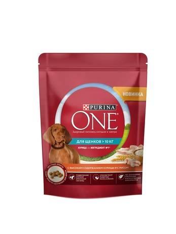 Какой корм лучше для кастрированных собак мелких пород: обзор готового питания и натуральные виды пищи