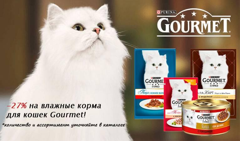 Корм для кошек гурме — только влажные консервы для взрослых животных