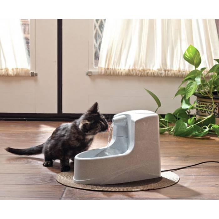 Поилка для котов — выкладываем по полочкам