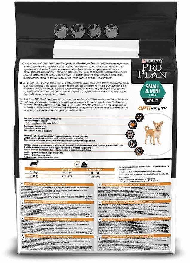 Никакого чаппи: 11лучших кормов для собак