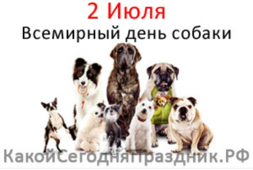 Всемирный день домашних животных в 2020 году: какого числа, дата и история праздника