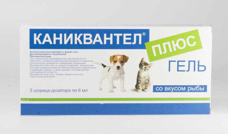 Инструкция по применению каниквантела плюс от глистов: для собак, кошек и щенков