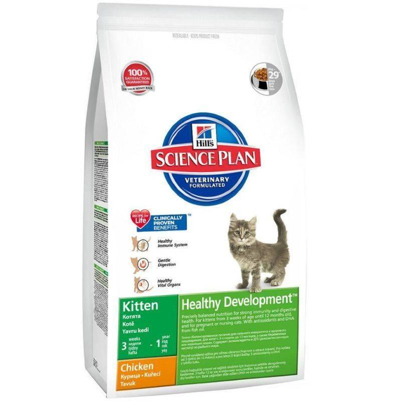 Влажный корм для кошек | лучшие, рейтинг, отзывы