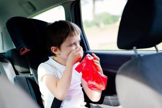 Что делать чтобы собаку не укачивало в машине: средства от тошноты в автомобиле