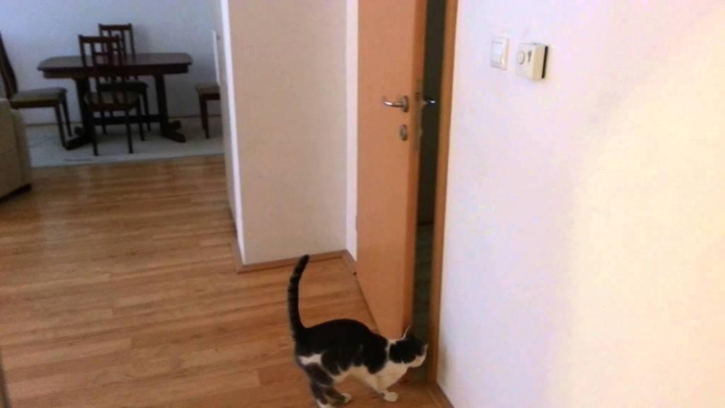 Дверь холодильника туго открывается – что делать? ваш вопрос – наш ответ!