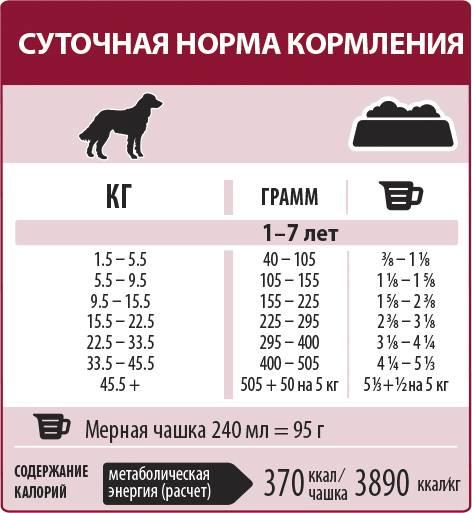 Сколько и как давать рыбий жир щенку?
