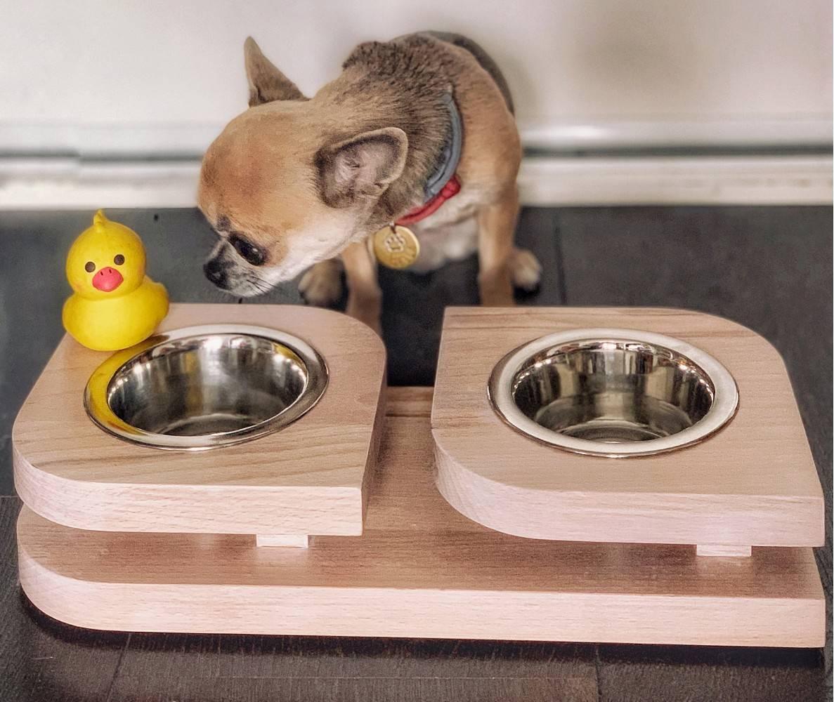Как подобрать подходящую миску для собаки