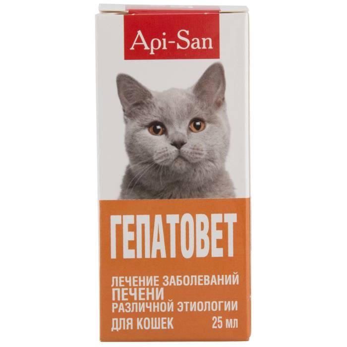Инструкция по применению к препарату гепатовет для кошек и собак