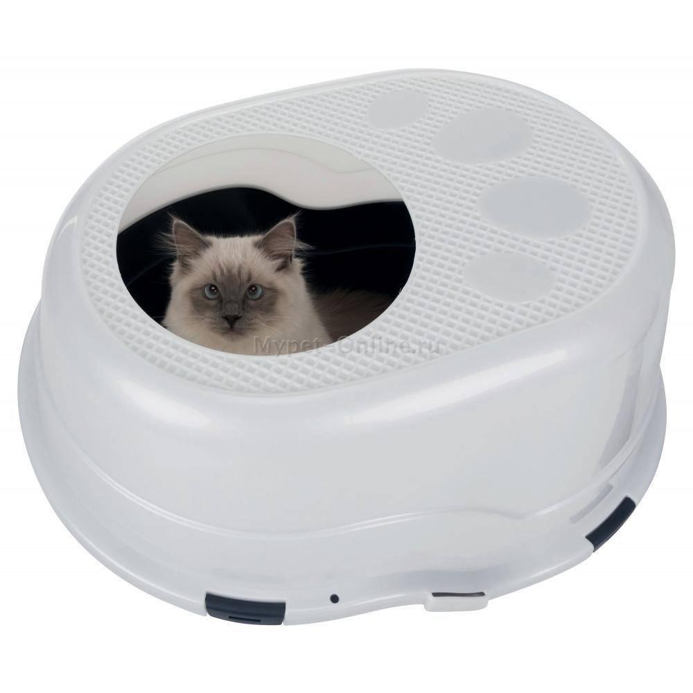 Туалет для кошек: открытые и закрытые модели, нюансы выбора и изготовление своими руками