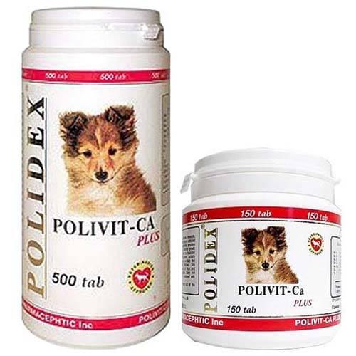 Витамины для щенков: мелких, крупных и средних пород