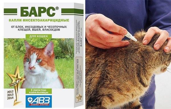Капли «барс» от блох и клещей для кошек – инструкция по применению