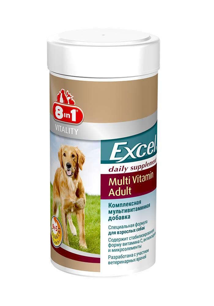 Витамины для собак для шерсти и кожи 8 в 1: правила приема таблеток