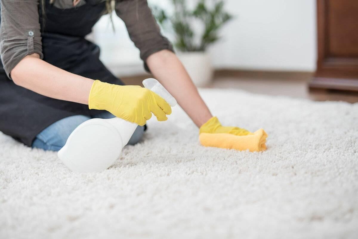 Как избавиться от запаха псины: советы и рекомендации по устранению неприятного запаха в доме