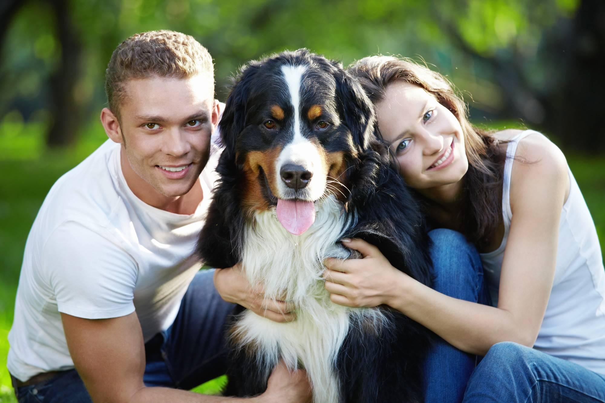 Собаку рвет слизью желтого, белого, зеленого цвета, с пеной или без пены.
