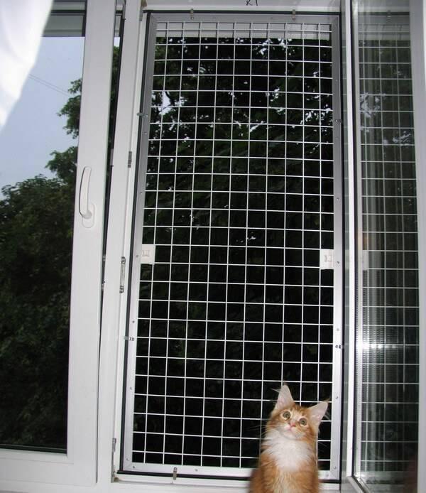 Что такое сетка на окна антикошка