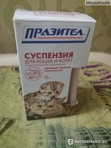 Инструкция и состав суспензии для кошек и котят «празител»