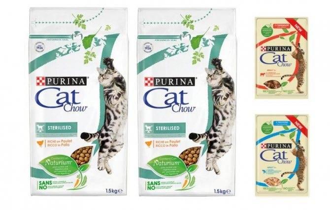 Корма холистики для кошек: список, рейтинг, отзывы