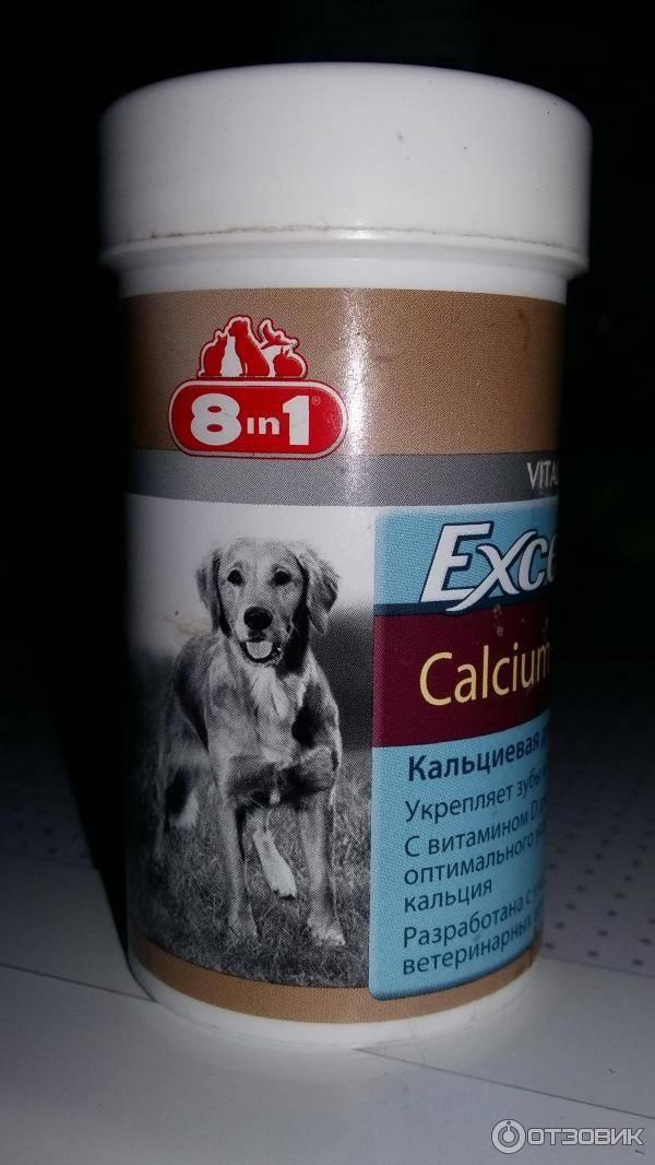 Витамины для беременных собак: мелких, средних и крупных пород, какие нужны, как давать