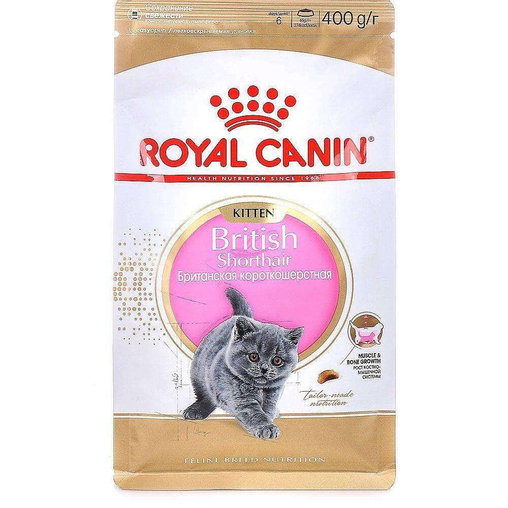 Корм для котят royal canin kitten (для котят с 4 месяцев до года)