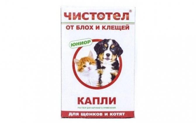 «адвокат» – капли для собак: как использовать?