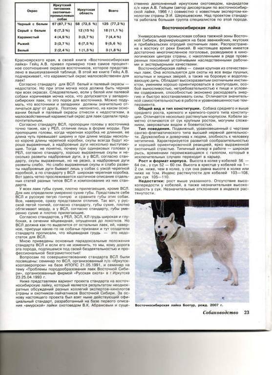 Восточно-сибирская лайка: описание породы