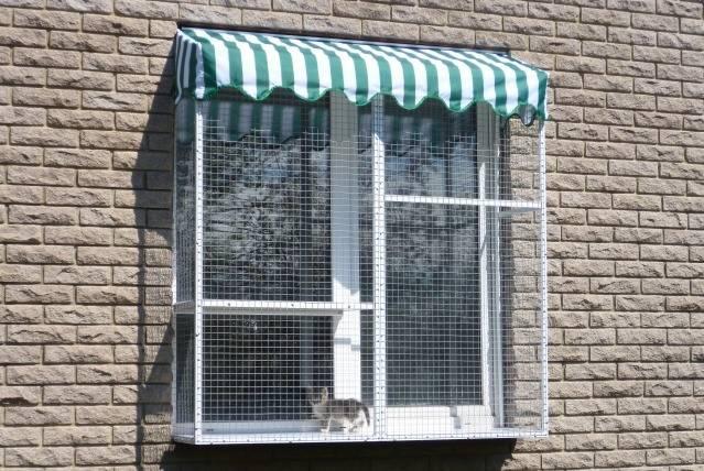 Защита на окна от кошек | от выпадания, своими руками, купить, цена