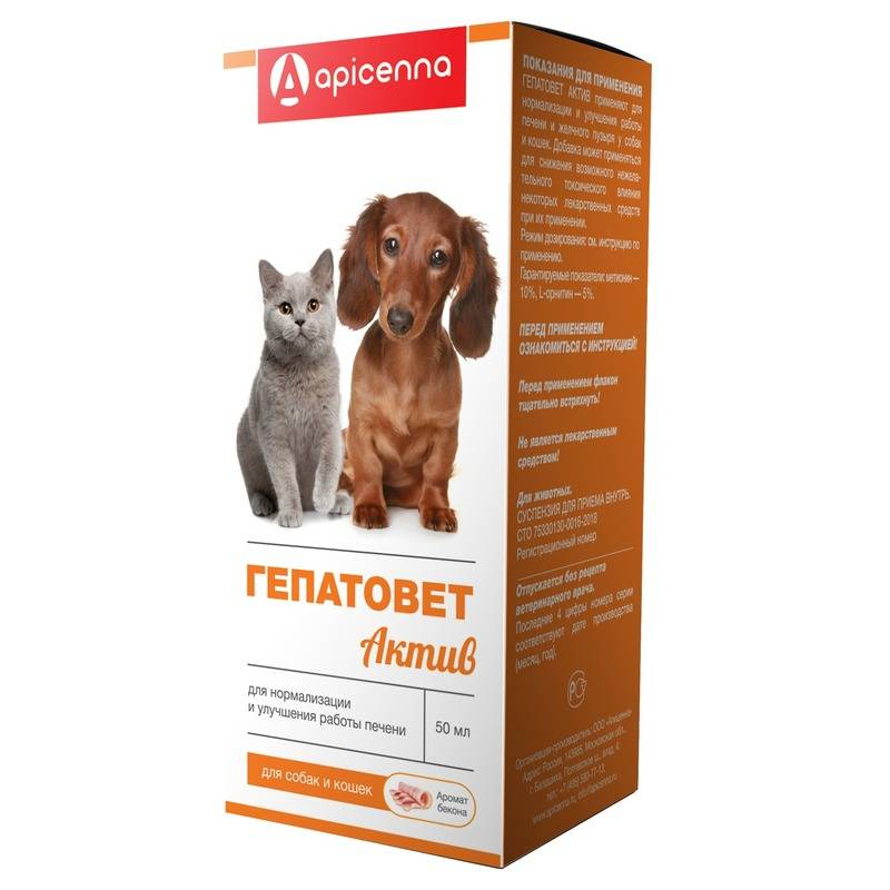 Препарат гептрал для кошек: скорая помощь при заболеваниях печени и жёлчного пузыря