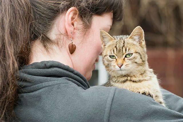 Как отучить взрослую кошку кусаться и царапаться: находим причину и решаем