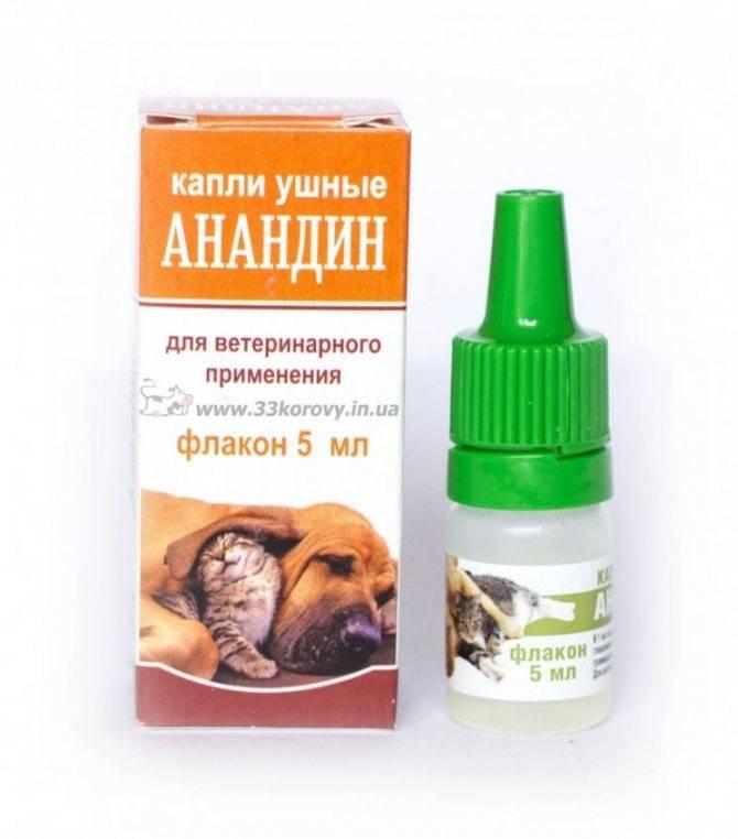 Перед тем, как использовать анандин для собак прочтите это!