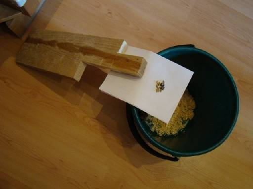 Как поймать хомяка в квартире