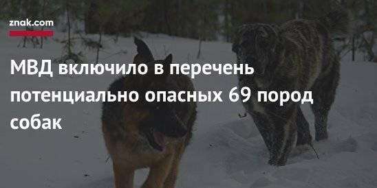 Список опасных пород собак   полный новый утвержденный список