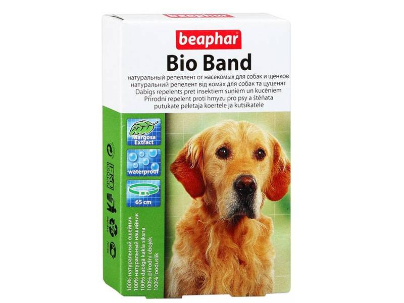 Как подобрать ошейник от блох и клещей для собак? — 4 лапки