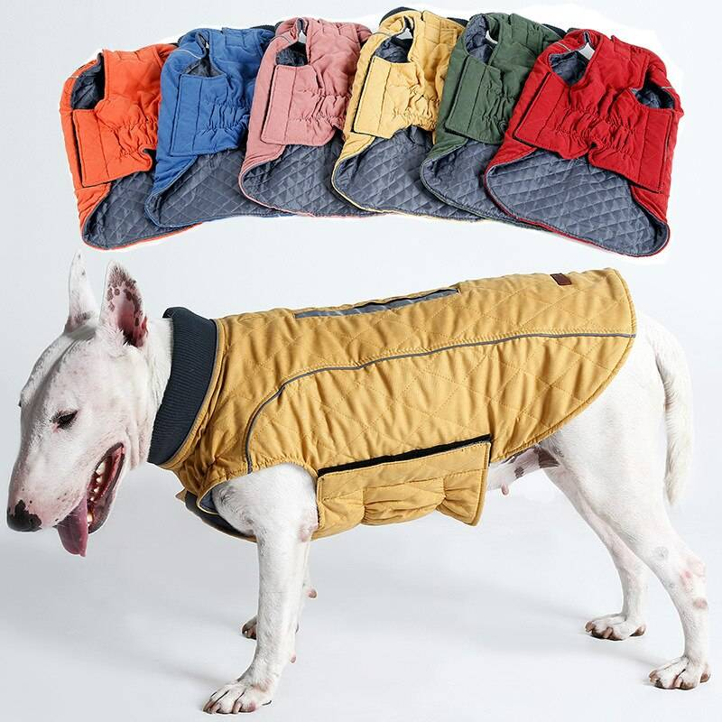 Одежда для йорков ? покупать или сделать своими руками