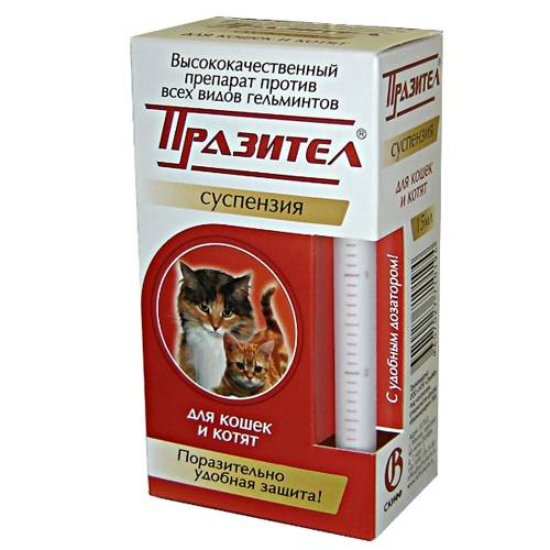 Глистогонное для кошек — обзор лучших препаратов