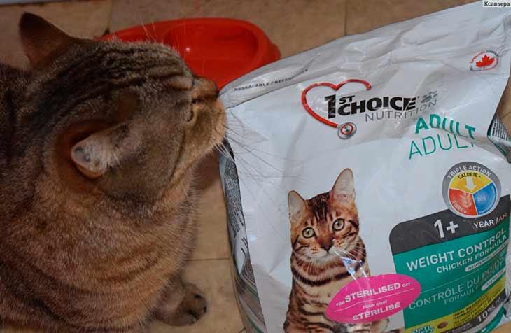 Корма для кошек 1st choice