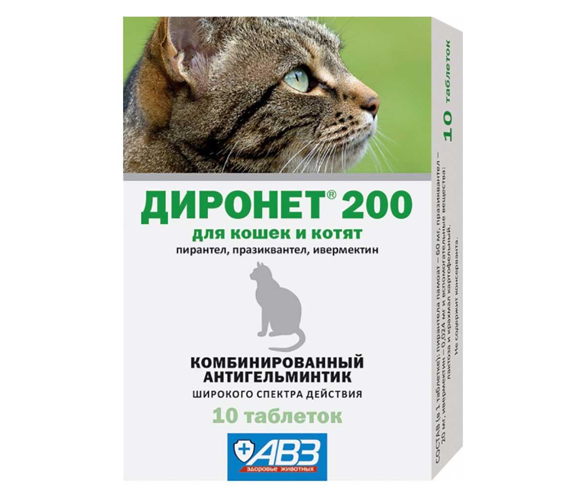Препараты от глистов для кошек: как правильно выбрать противоглистное средство, советы и отзывы