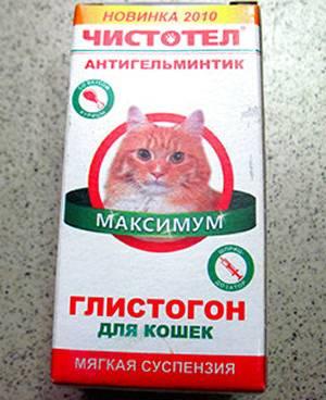 Глистогонное для кошек: симптомы, последствия и способы лечения