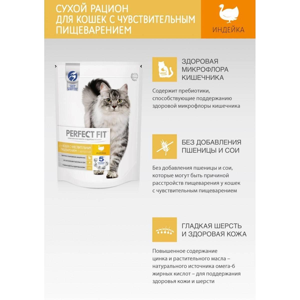 Корма для домашних кошек «перфект фит» от «пурина» с фото: какого класса сухой и влажный продукт, что входит в состав?