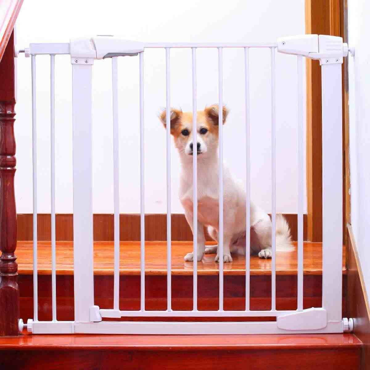 Какие бывают комнатные домики для собак в квартиру: рекомендации по выбору